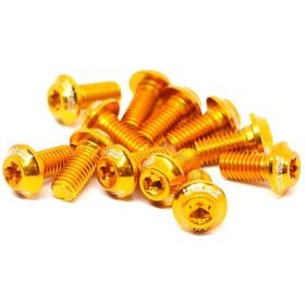 Trickstuff Viti disco freno ultra leggere alluminio M5x10 T20 12 pezzo oro
